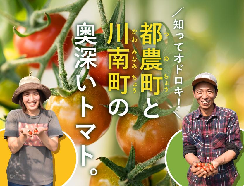 都農町と川南町の奥深いトマト!